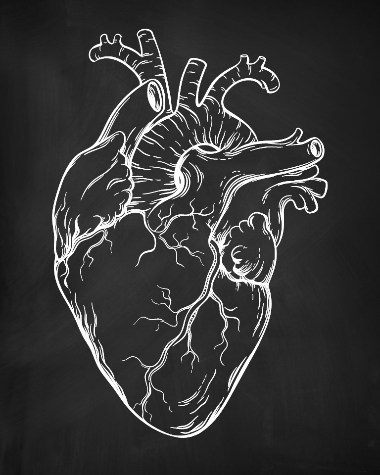 Anatomical-Heart-Nurses-Notebook-Black.jpg